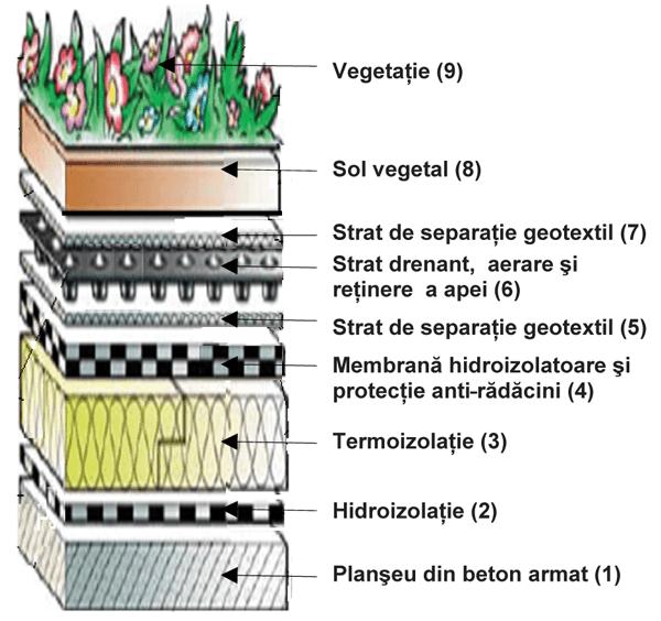 Acoperisul verde – gradina: solutie de reabilitare ecologica a cladirilor