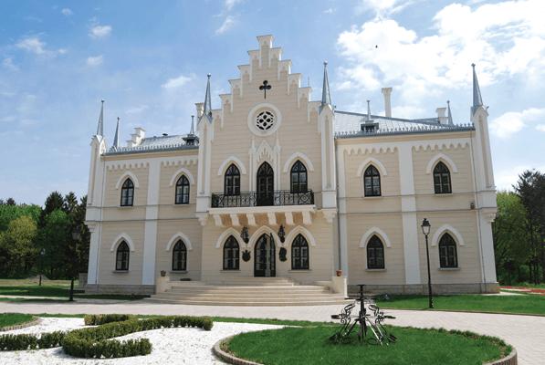 Palatul Al. I. Cuza, Ruginoasa. Consolidare, restaurare si amenajare