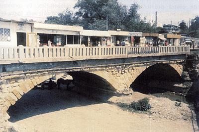 Podurile: bolti si arce (V)