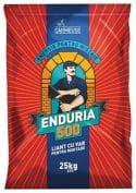 CARMEUSE: ENDURIA 500® – energie pentru mistrie