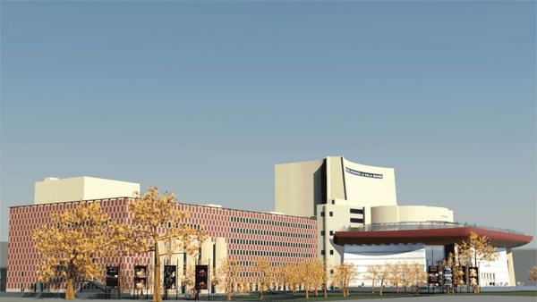 Teatrul National I. L. Caragiale Bucuresti (VII). ZONE PRINCIPALE DE ACTIVITATE SI DE CONCEPT DE REZOLVARE